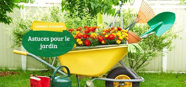 Jardin : astuces du printemps 3