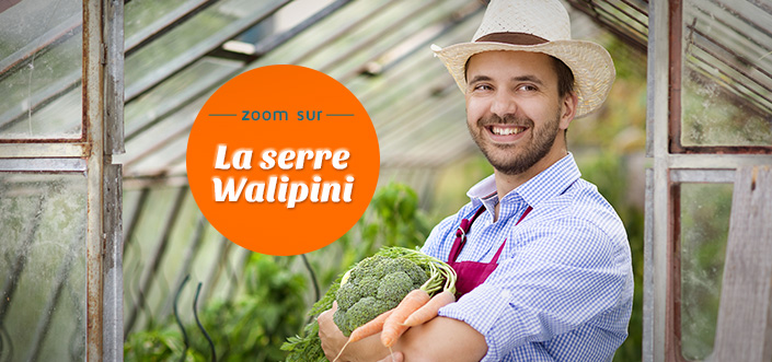 Serre Wallipini