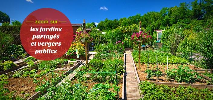 Jardins partagés et vergers publics