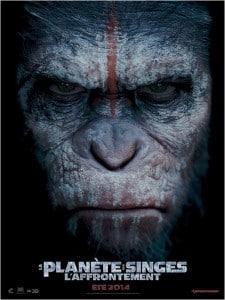 La planète des singes - L'affrontement