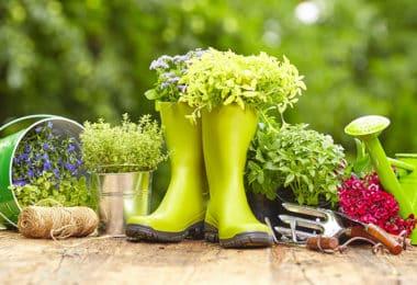 Prendre soin de son jardin