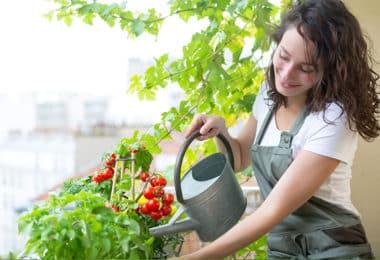 Entretenir et aménager son balcon pas cher