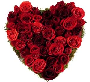 Coeur de roses pour la Saint Valentin