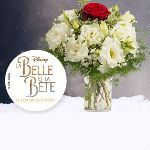 goodies la belle et la bete