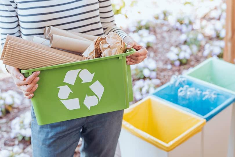 Les poubelles de tri dès 10€ pour la Journée du Recyclage 1