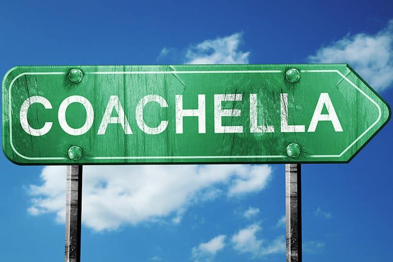 3 looks incontournables pour Coachella 1