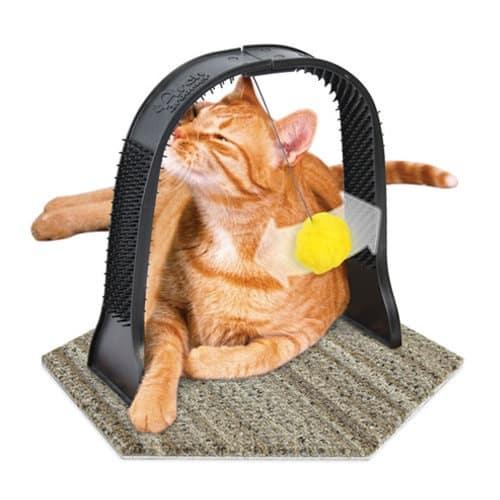 Journée internationale du chat : 5 sites avec cashback ! 2