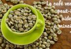 Mincir grâce au café vert - Comment ça marche ? 5